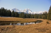 WildLife Photos of Durmitor Mountain,