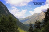 WildLife Photos of Landscapes, Natura 2000 / IBA, Rila, BG055